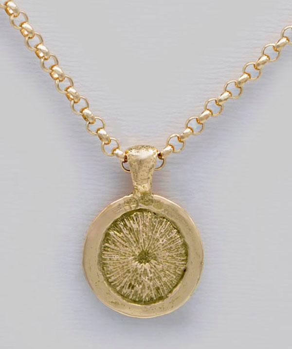Médaille coquillage